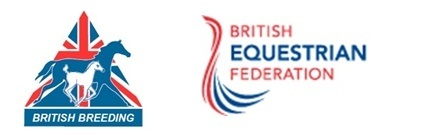 BEF Futurity Endurance Report