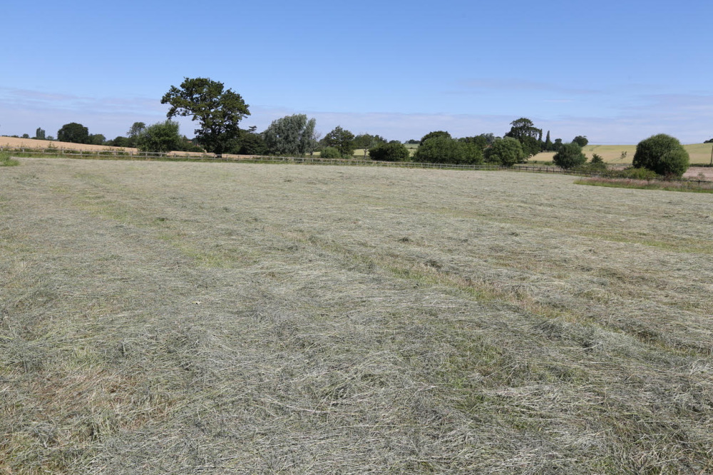 Hay shortage? Don't panic says SPILLERS®nutritionist