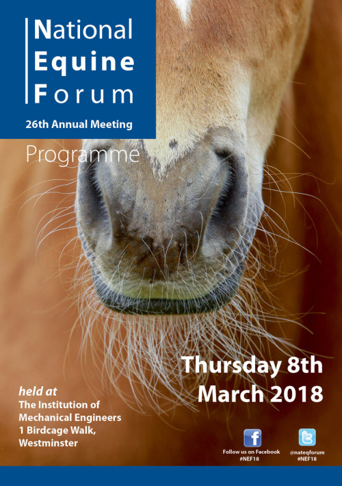 Live Streaming for National Equine Forum