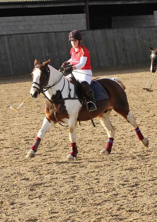 The Girl who Jumps Arabs: Enter Polo