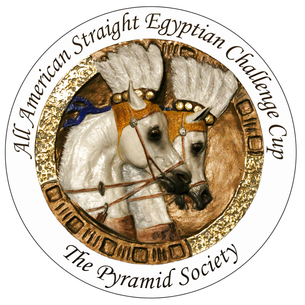 The new All American Straight Egyptian Challenge Cup kicks off at the Scottsdale Arabian Horse Show