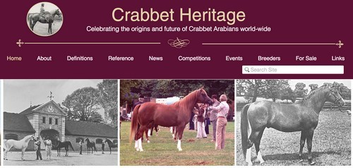 A new website for everyone interested in the Crabbet Arabian!