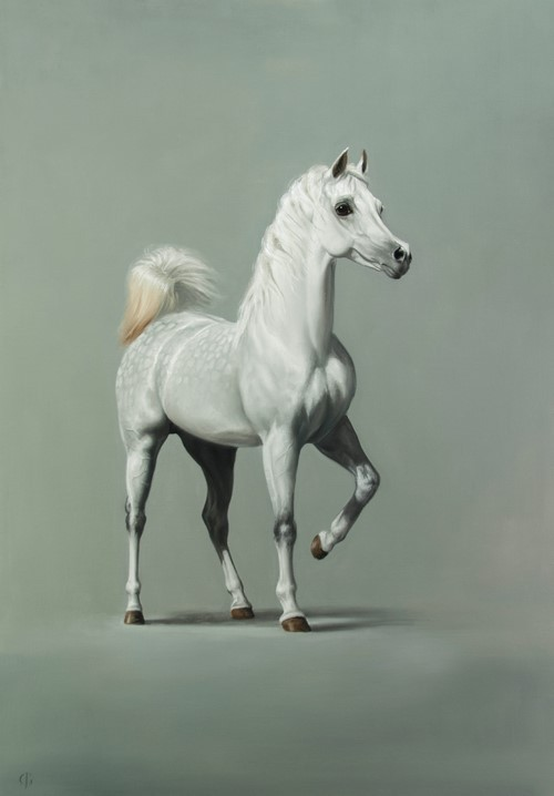 Celebrating the Arabian Horse: Solo show of new equestrian paintings by James Gillick