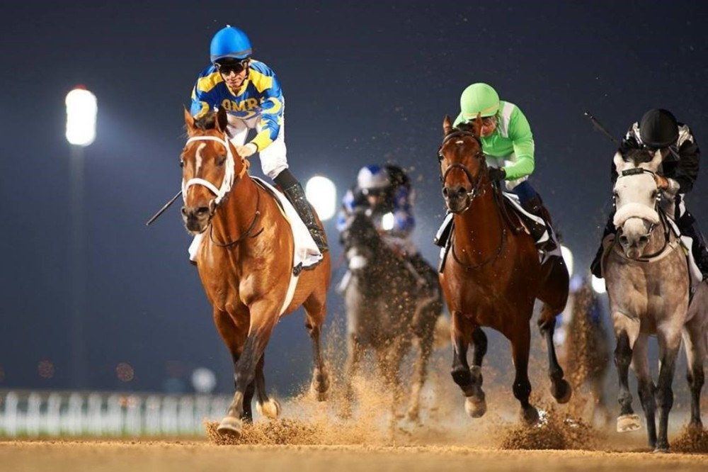 Millionaire Paddys Day Makes Arabian Racing History