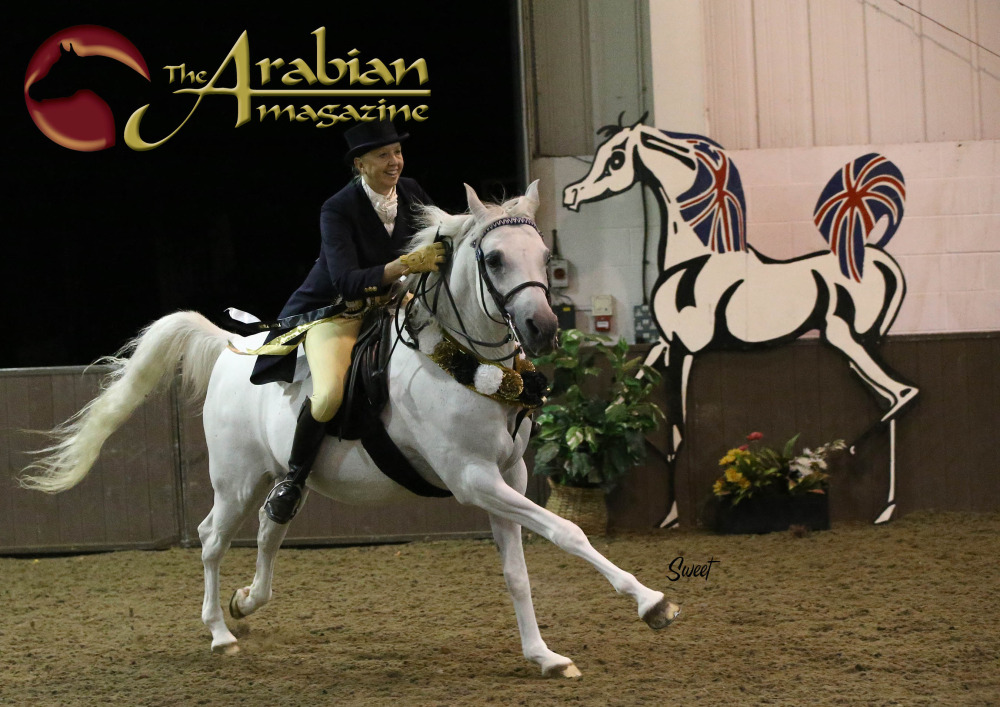 The UK International Arabian Horse Show