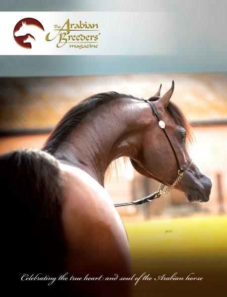 The Arabian Breeders' Magazine Herodotus Al Shiraa