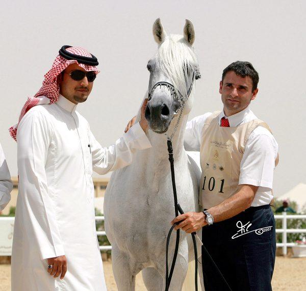 Farres Riyadh Show HH Prince Abdullah bin Fahad Al Mohamadia Stud