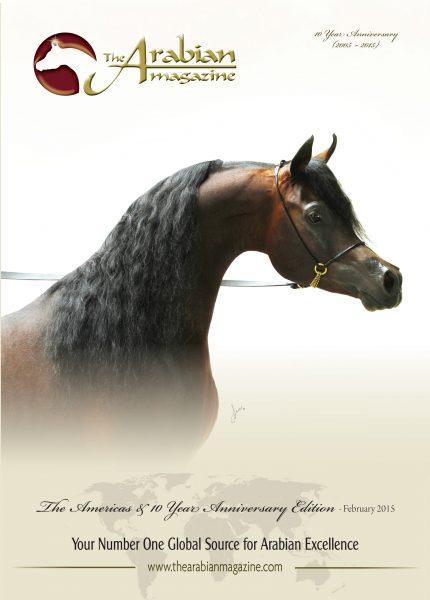 Emerald J QR Marc Emandoria Jadem Arabians Al Muawd Stud The Arabian Magazine