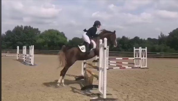 Annia Aurelia jumping 90cm