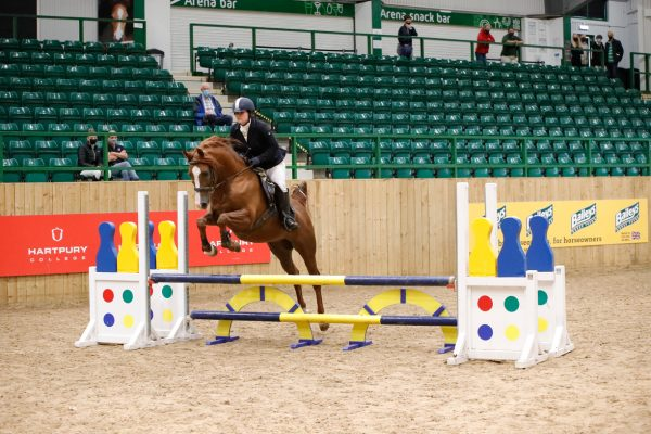 The Girl with the Jumping Arabs Marcus Aurelius at the SWWRC Championships