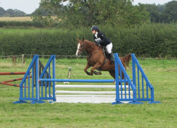 Avonbrook Odin in the showjumping at Sapey (c) Becky Bertram