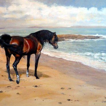 Beach Bum card by Judi Kent-Pyrah