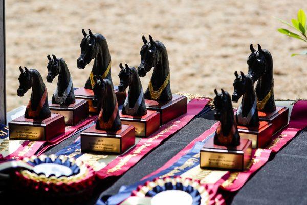 Australian Arabian National Championships trophies