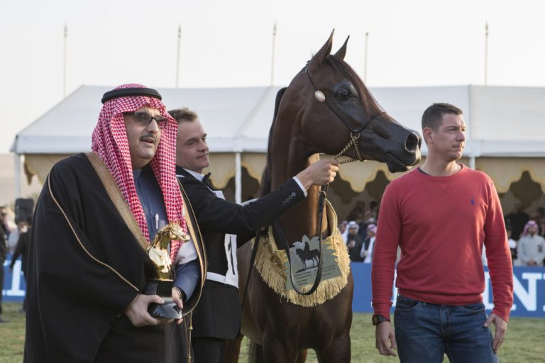 King Abdulaziz Arabian Horse Centre International Championship